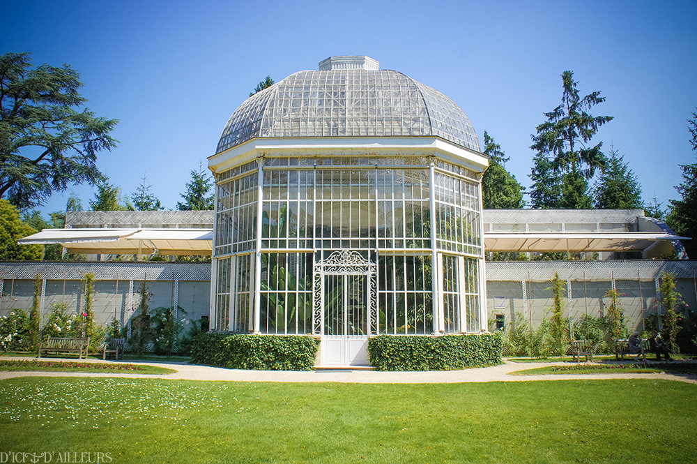 Dans les jardins d 39 albert kahn d 39 ici d 39 ailleurs - Les jardins albert kahn ...